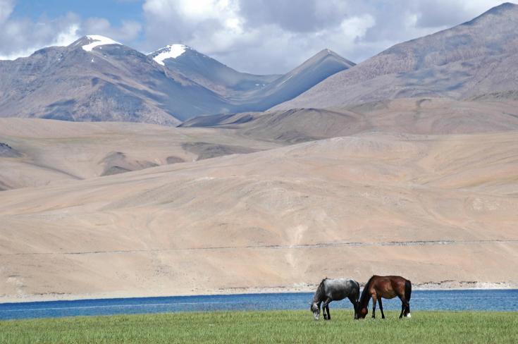 © Ladakh Terres Oubliées