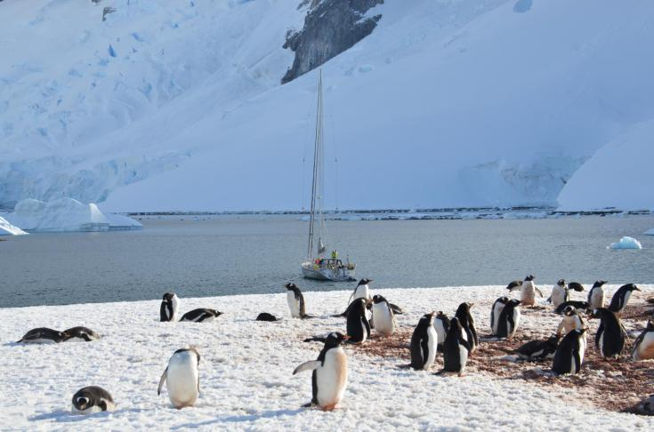 © Voyage en Antarctique expédition polaire navigation bateau nature