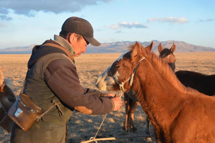 © Steppes et nomades d'Asie Centrale
