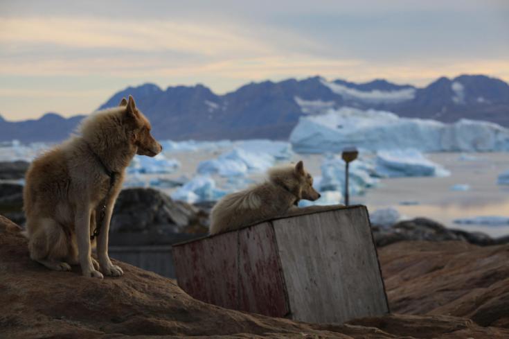 © Kayk et trek en camp de base au Groenland