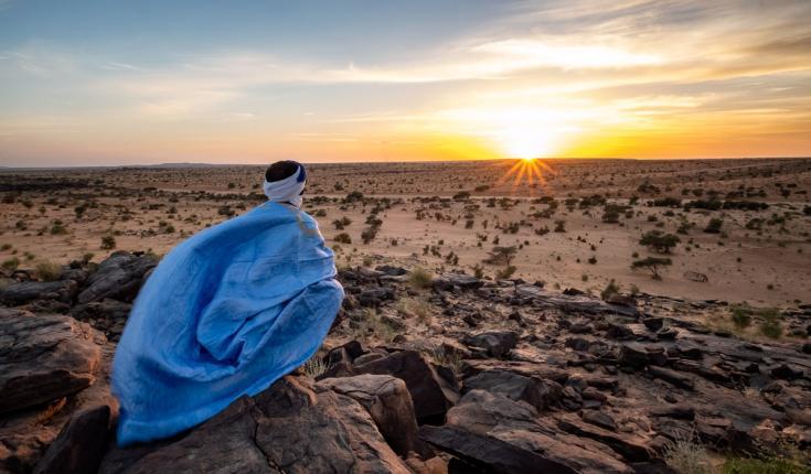 © Chamelier de Mauritanie au soleil couchant devant le désert du Sahara lors d'un voyage Photo dans le Sahara