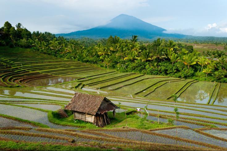 © voyage Bali