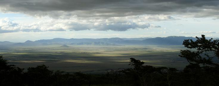 © safari photo afrique