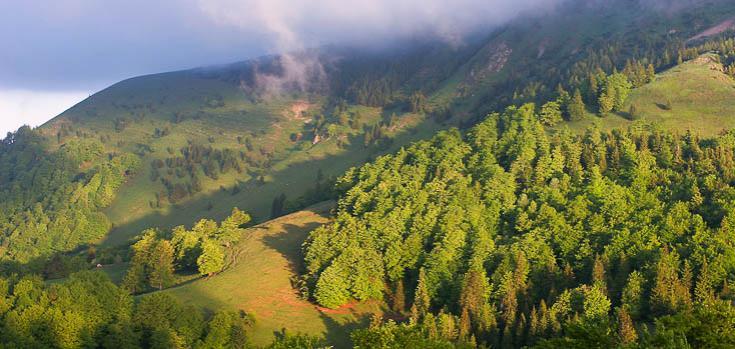 © randonnée nature observation faune Slovaquie