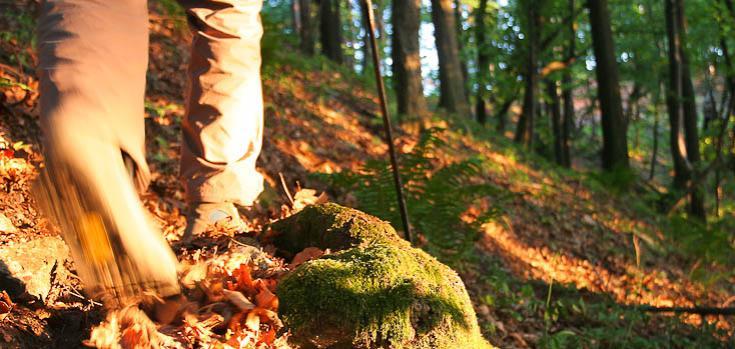 © voyage balade nature Slovaquie