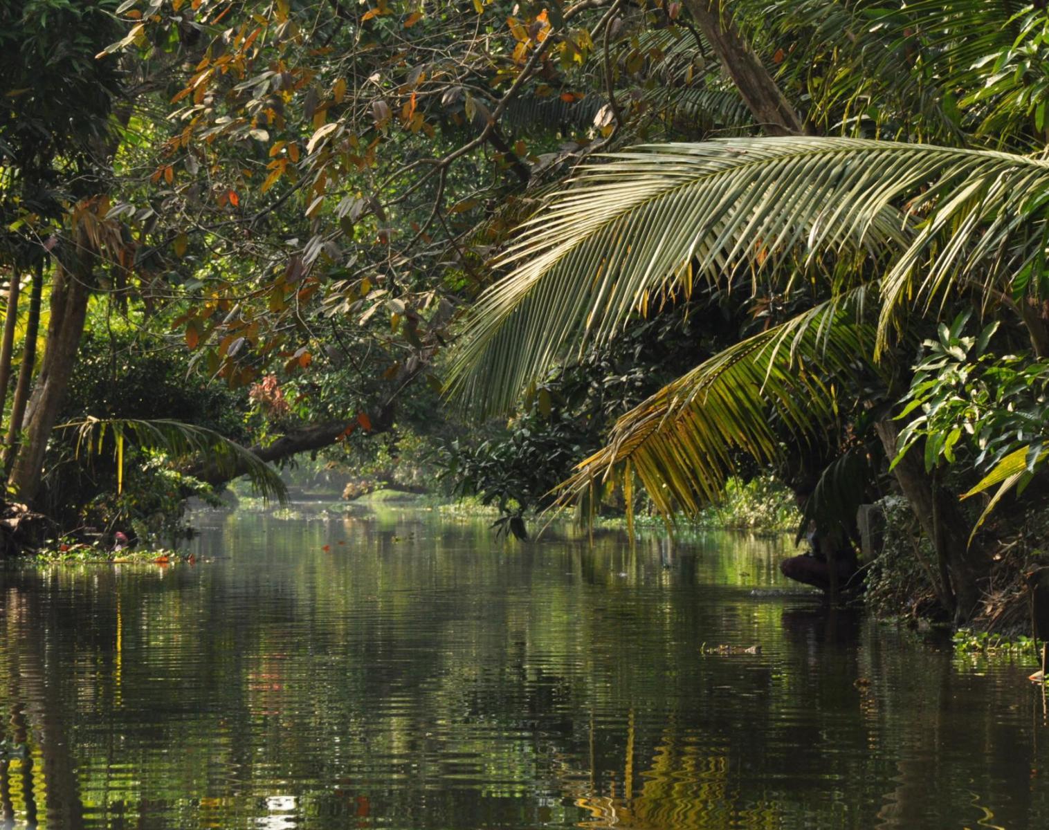 Inde  Grande Traversée de l'Inde du Sud   Découverte Observation nature