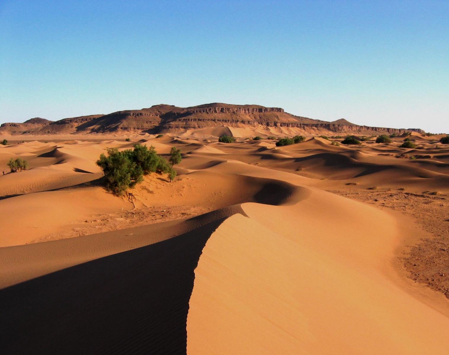 Maroc  Oued Drâa, la rivière sans fin   Trek & Randonnée