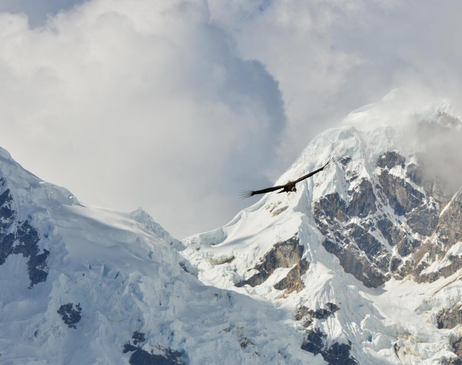 Pérou  Trek de Choquequirao, la voie impériale   Trek & Randonnée Balade nature Rencontres et cultures du Monde