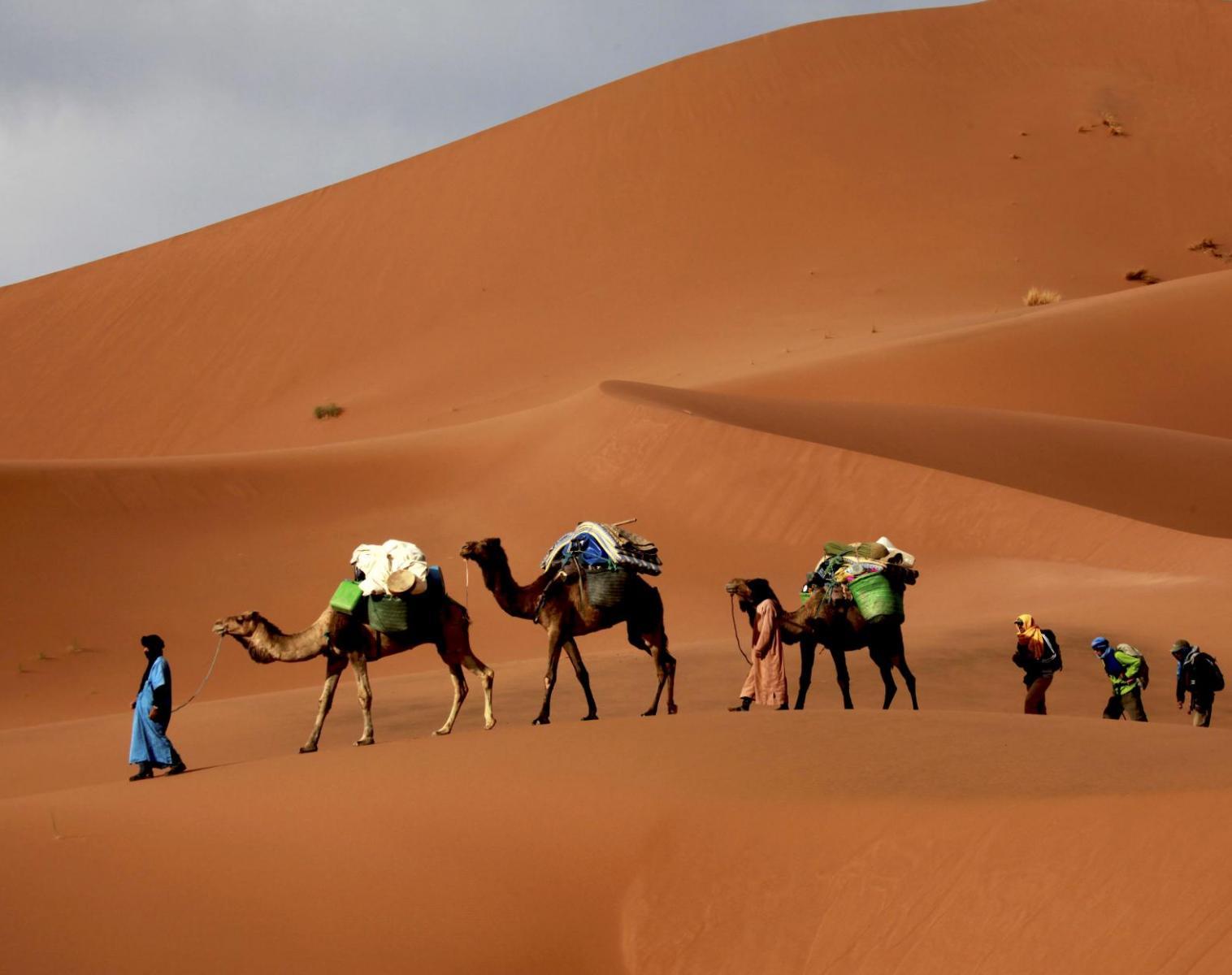 Maroc  Trek du Drâa aux dunes chantantes   Trek & Randonnée