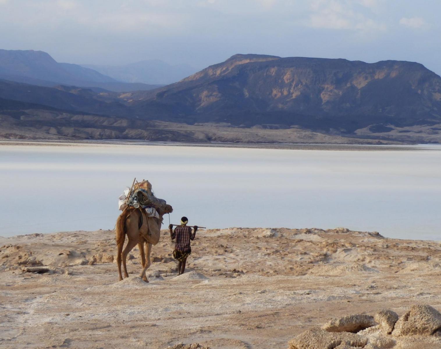 Djibouti  Randonnée chamelière et art rupestre   Trek & Randonnée Rencontres et cultures du Monde
