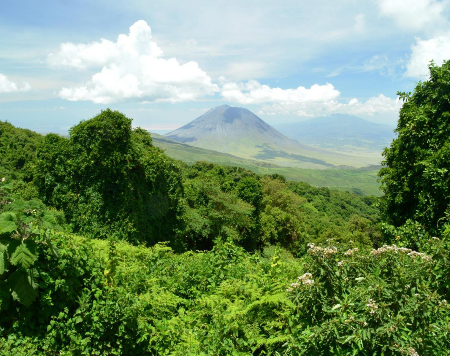 Tanzanie  Tanzanie : trek en terre Maasaï   Trek & Randonnée Safari Rencontres et cultures du Monde