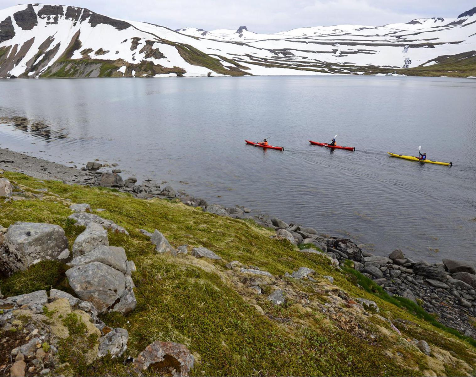 Islande  Les Fjords du Nord-ouest en kayak de mer   Découverte Kayak & Canoë