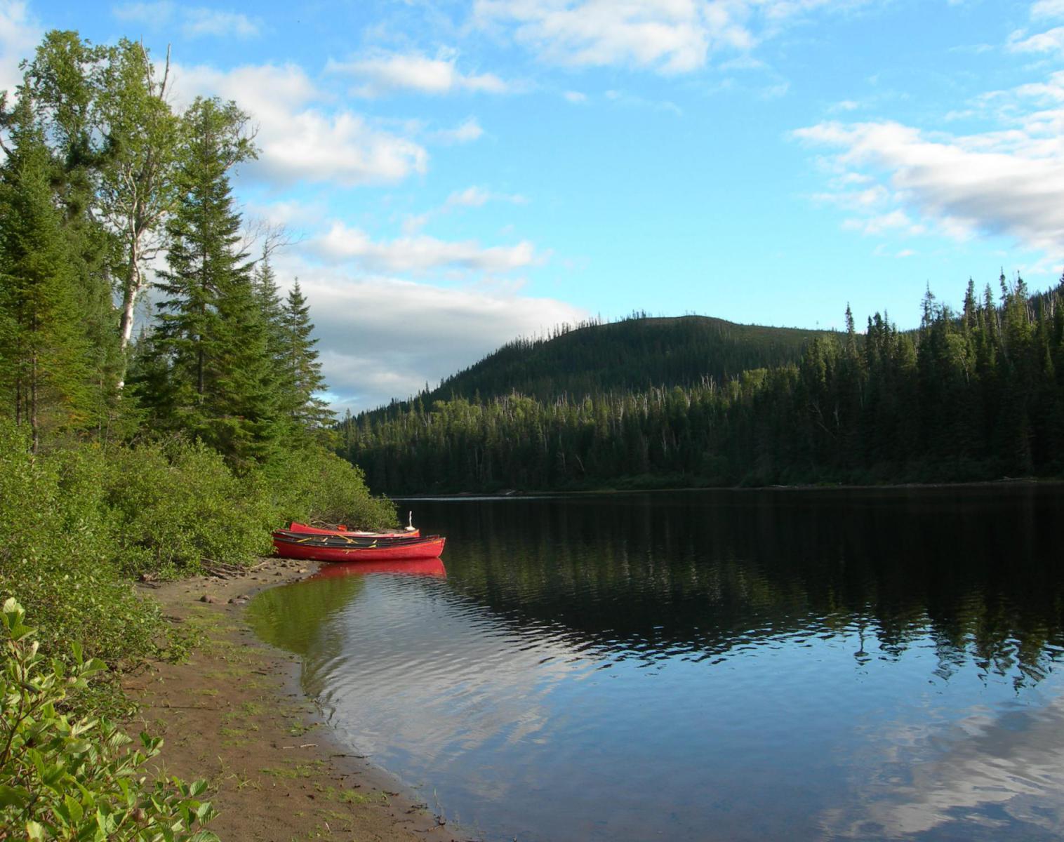 Canada  Eté boréal   Découverte Trek & Randonnée Kayak & Canoë Observation nature