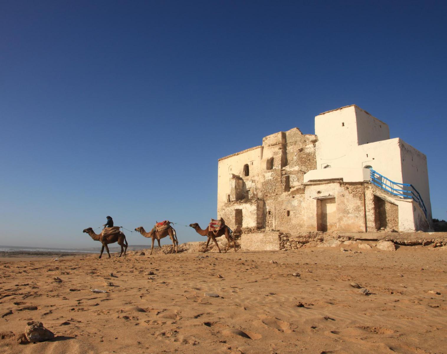 Maroc  Des plateaux du Yagour à Essaouira   Rencontres et cultures du Monde