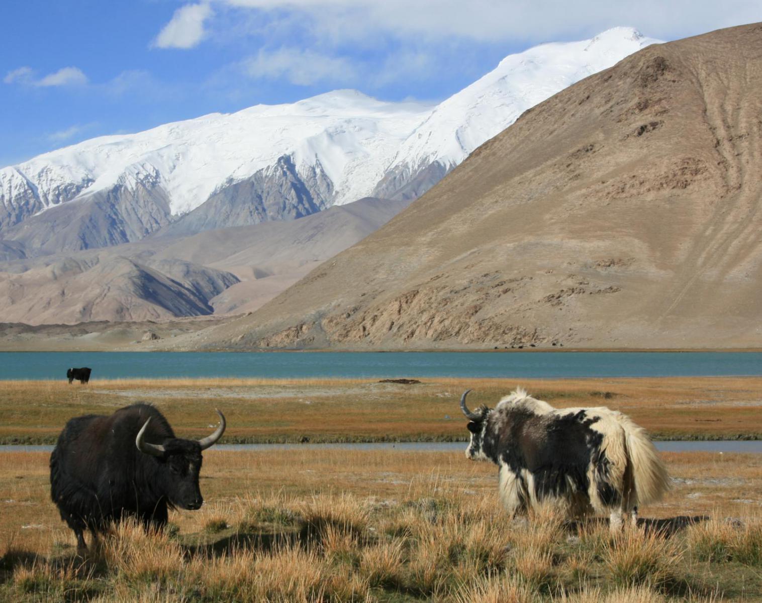 Kirghistan  Traversée mythique entre Mustagata et Pic Lénine    Rencontres et cultures du Monde