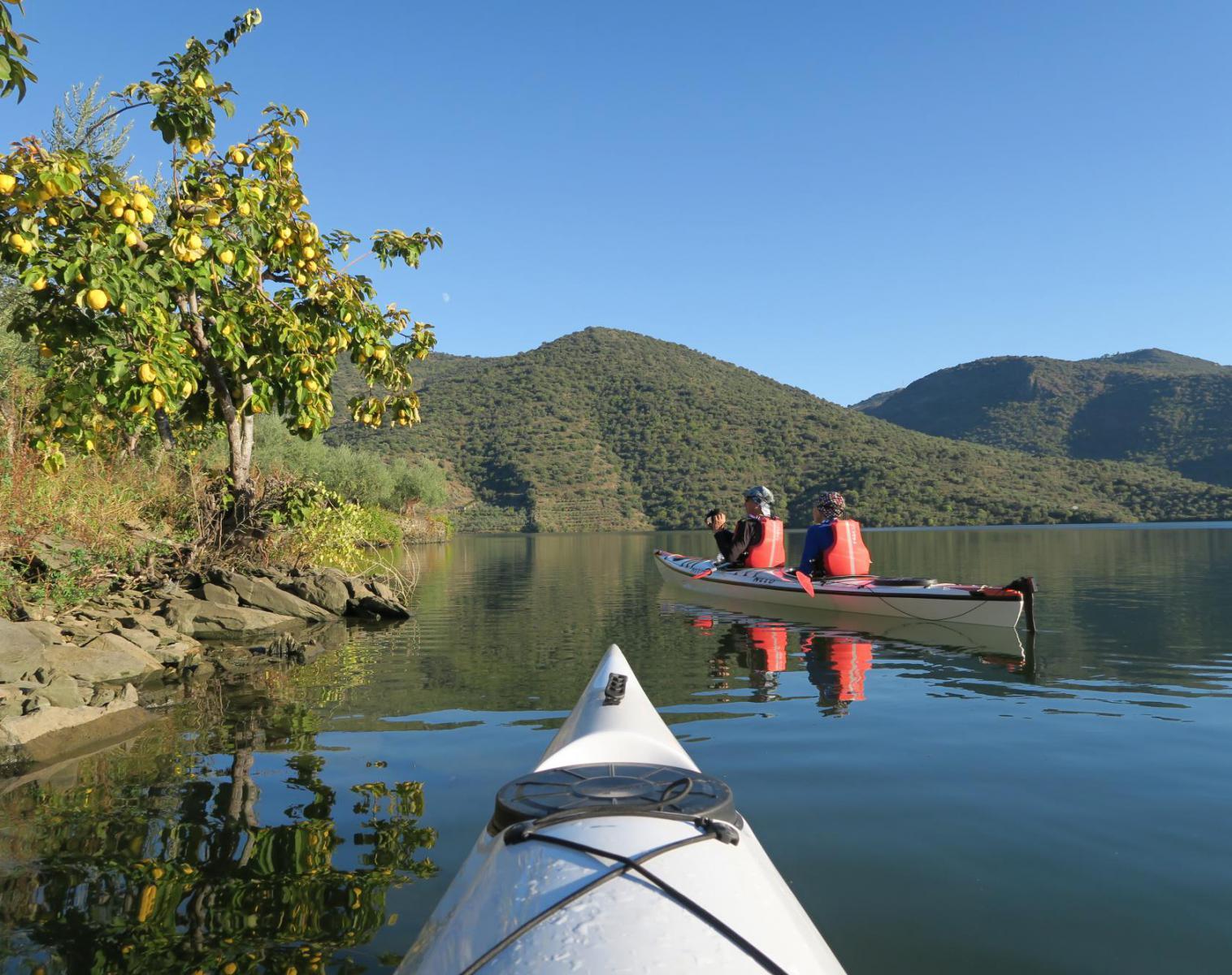 Portugal   Le Haut Douro en kayak de mer   Découverte Kayak & Canoë