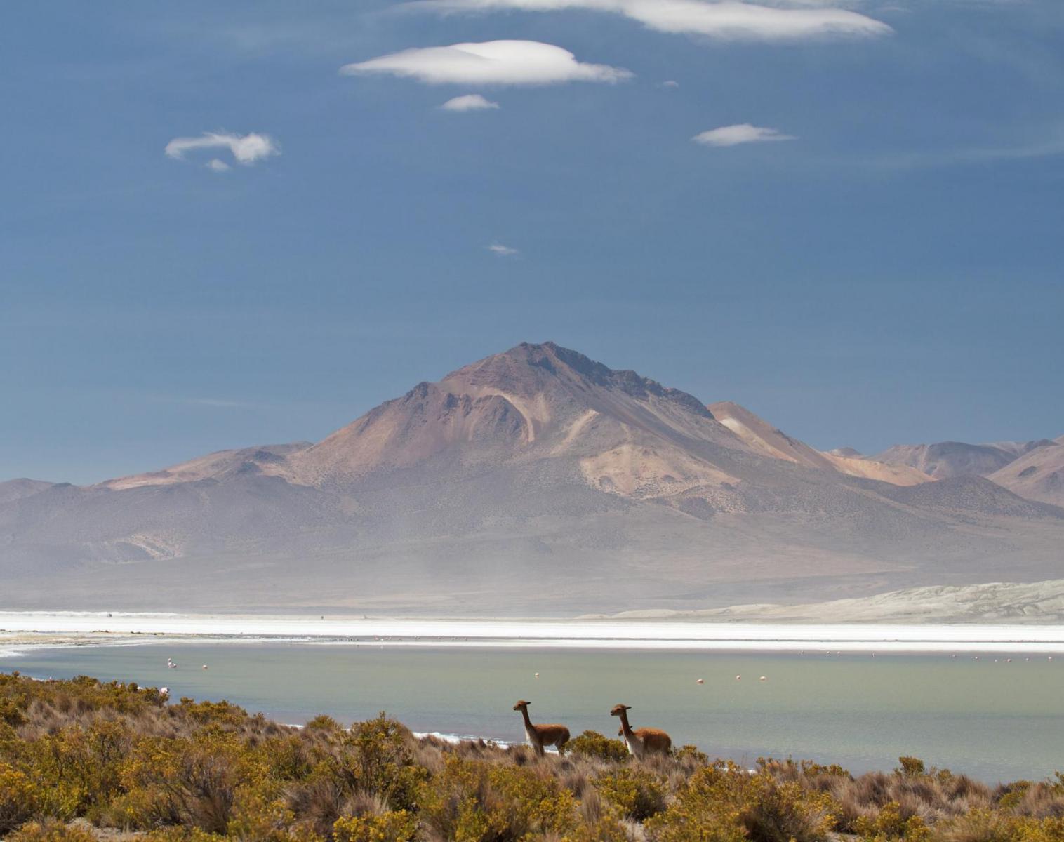 Chili  Chili, Bolivie : Trek au sommet de l'Atacama   Trek & Randonnée Photo Observation nature