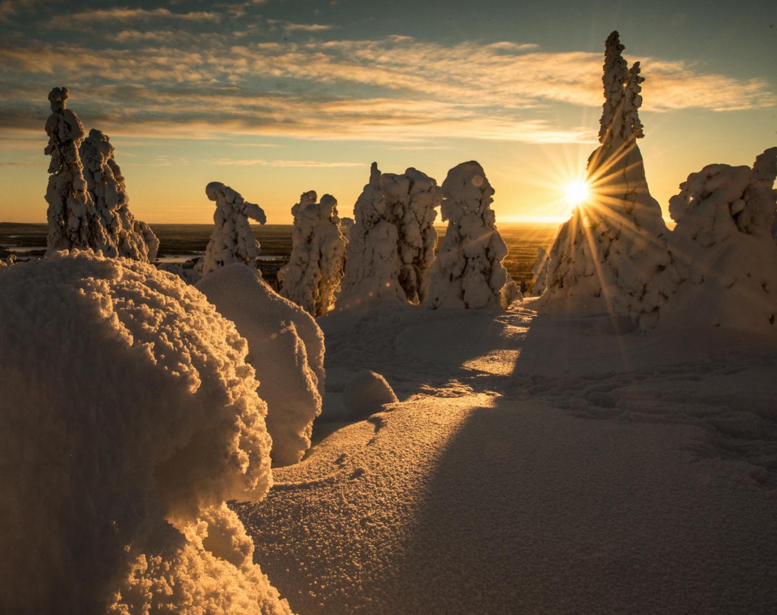 Finlande  Aventure lapone sous les aurores boréales   Ski & Pulka Raquettes