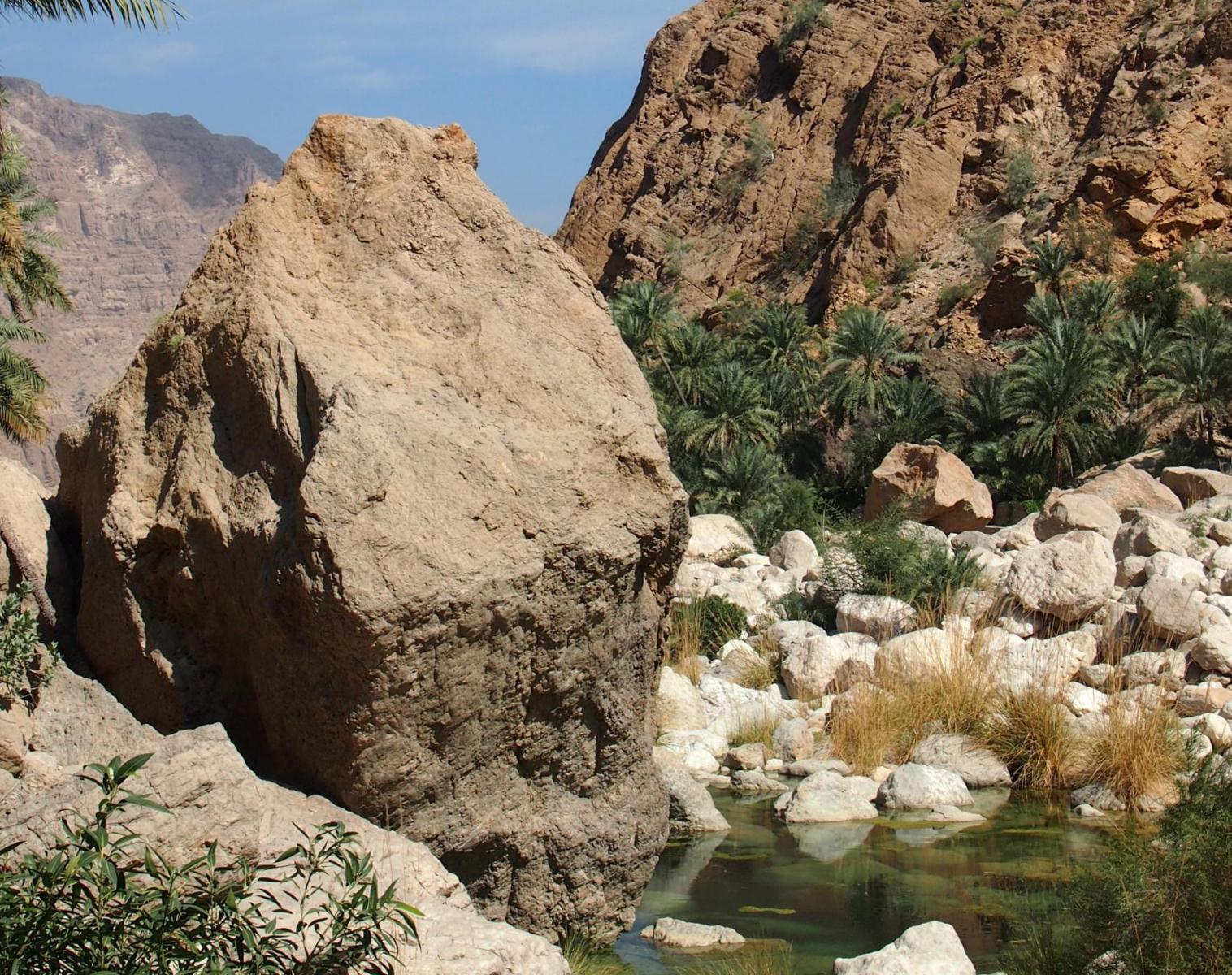Oman  Les petits sultans   Découverte