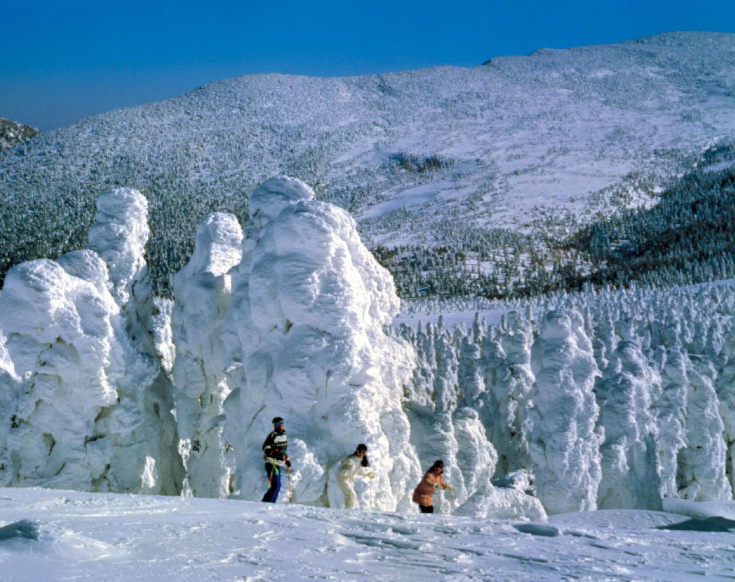 Japon  Le Japon dans son écrin hivernale   Balade nature Rencontres et cultures du Monde