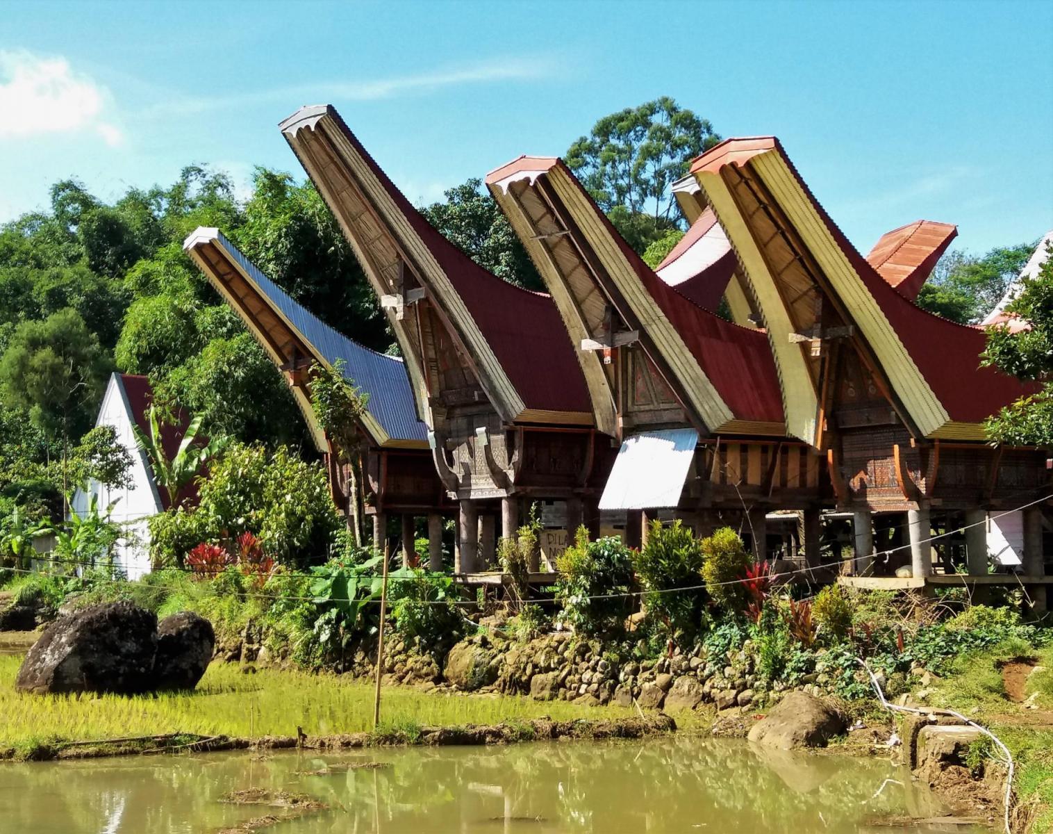 Indonésie  Bali, Sulawesi : La grande traversée en pays Toraja et Bajo   Découverte Rencontres et cultures du Monde