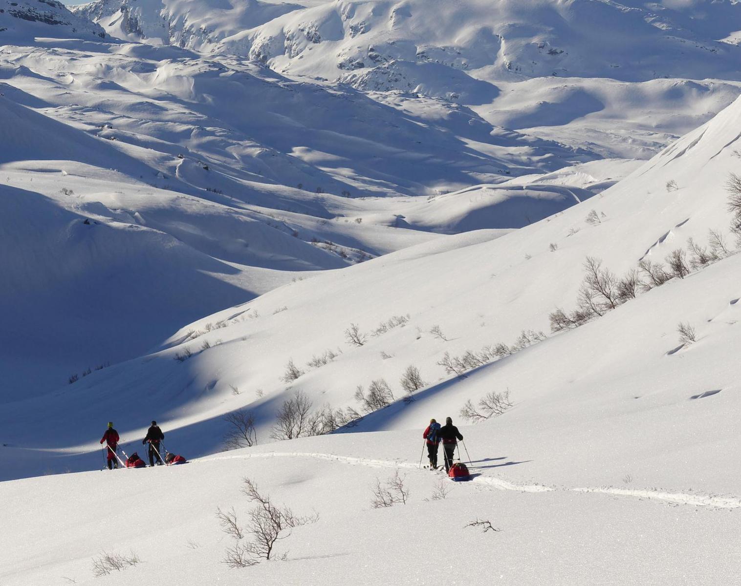 Norvège  Itinérance nordique au coeur du Sørlandet   Ski & Pulka