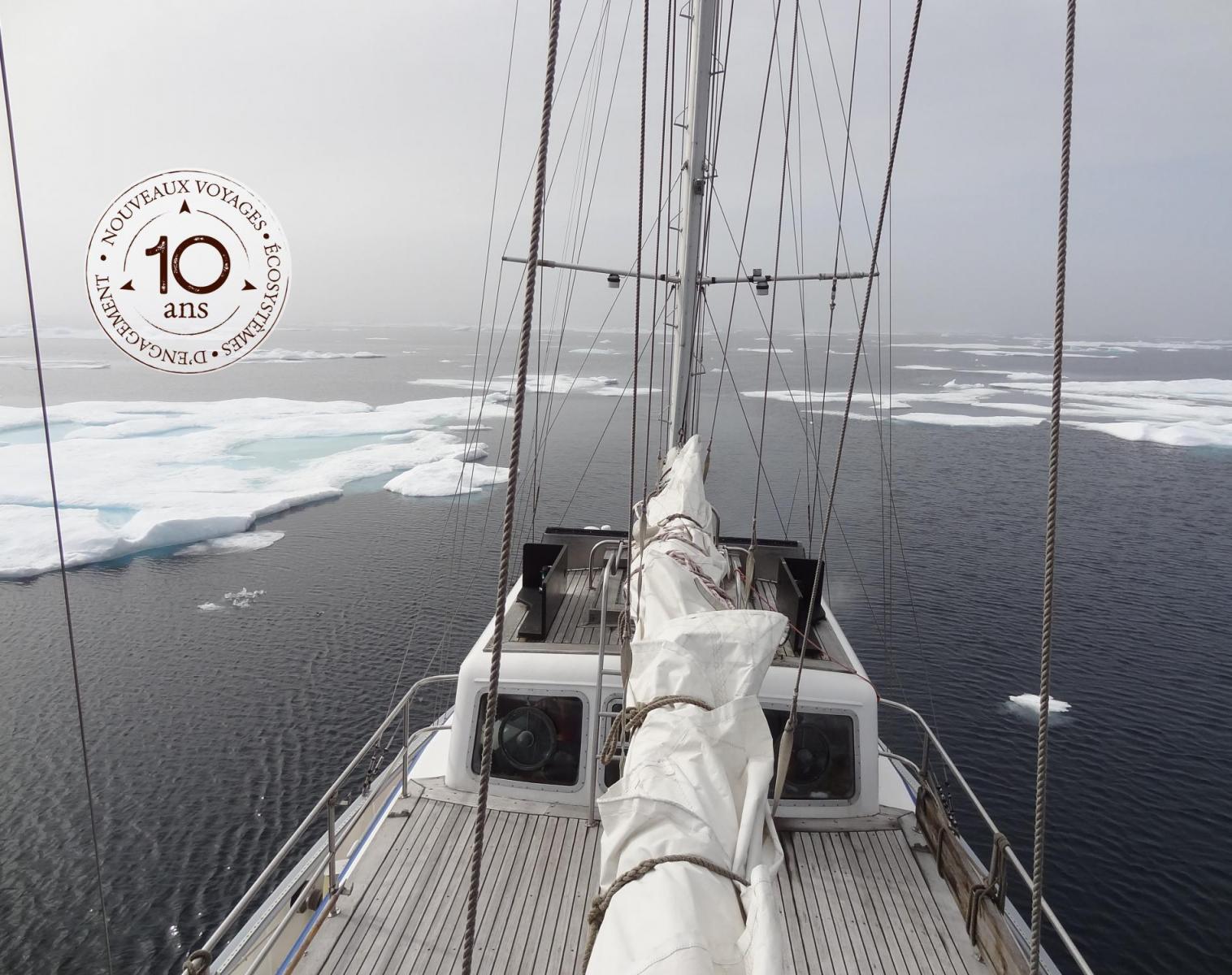 Spitzberg  Spécial banquise et ours polaires   Photo Observation nature Navigation