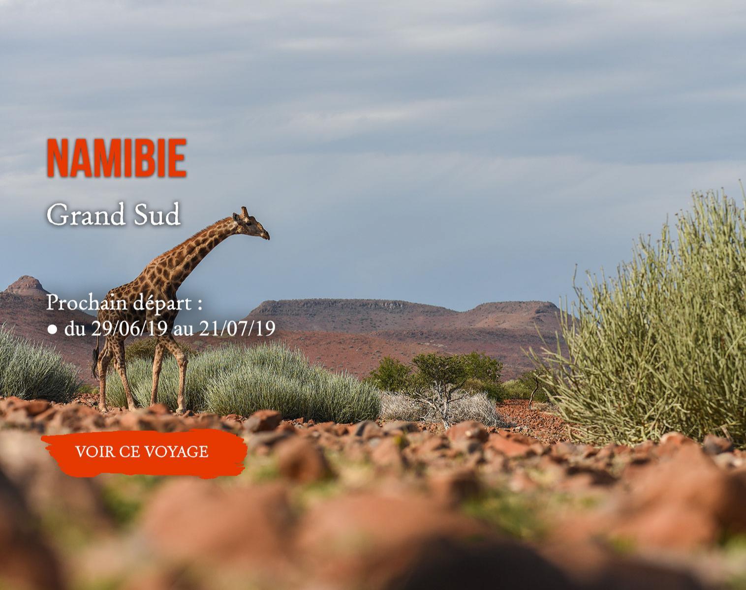 Namibie, Grand Sud