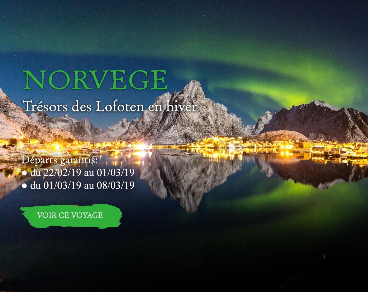 Norvège, trésors des Lofoten en hiver