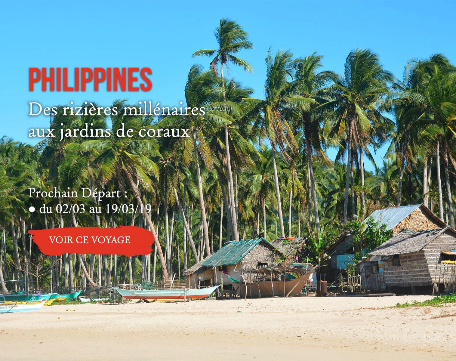 Philippines, Des rizières millénaires aux jardins de coraux