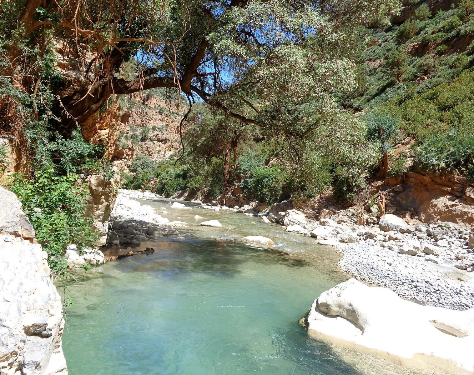 Maroc  Les petits Berbères   Découverte Trek & Randonnée