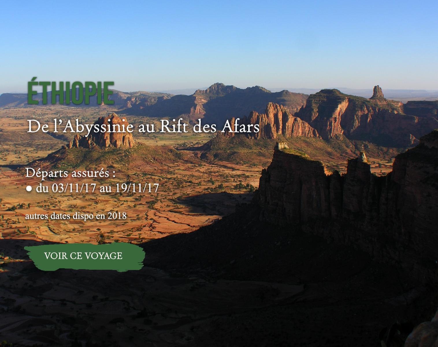 Ethiopie, de l'Abyssinie au Rift des Afars