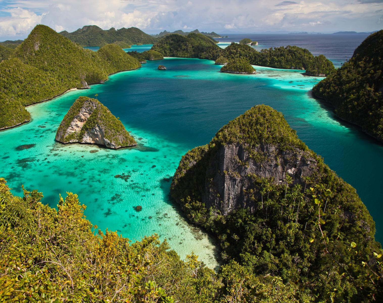 Indonésie  Le paradis sur Terre, l'archipel des Raja Ampat   Photo Observation nature Navigation Apnée & Plongée  Balade nature Rencontres et cultures du Monde