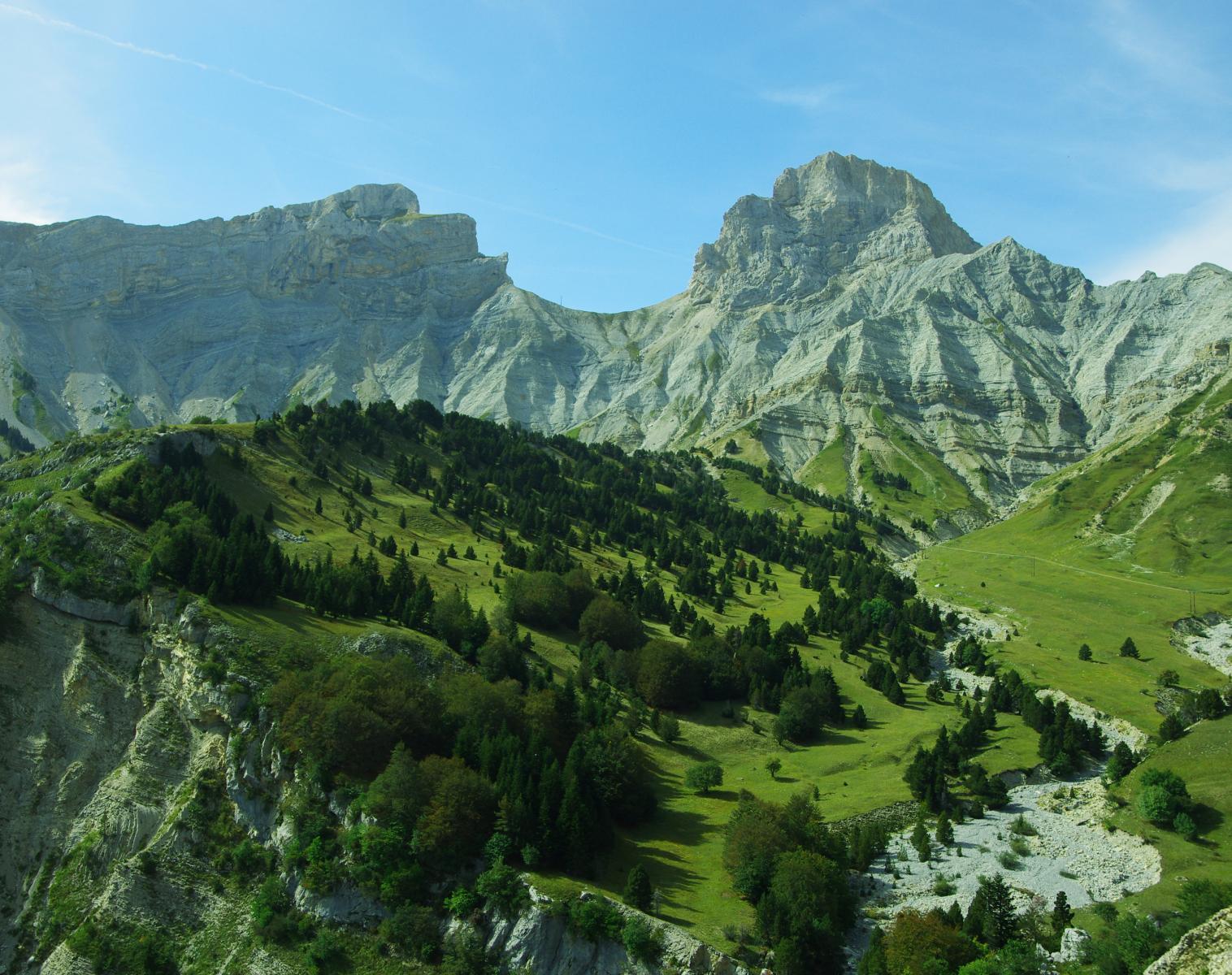 France  Au coeur du territoire du loup   Découverte Trek & Randonnée Photo Observation nature