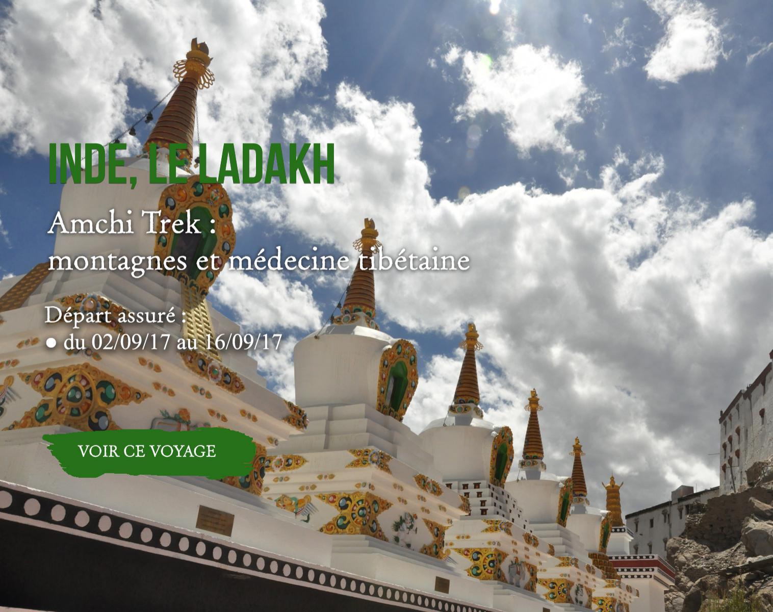 Amchi Trek : montagnes et médecine tibétaine