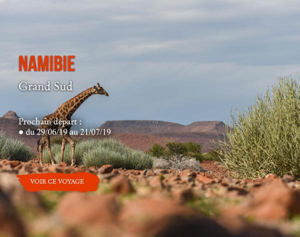 Namibie, Grand Sud