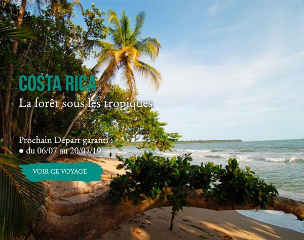 Costa Rica, La forêt sous les tropiques