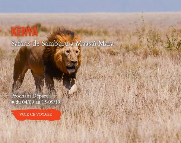 KENYA, Safaris de Samburu à Maasaï Mara
