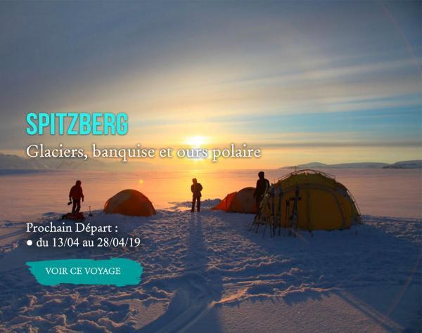 Spitzberg, Glaciers, banquise et ours polaire
