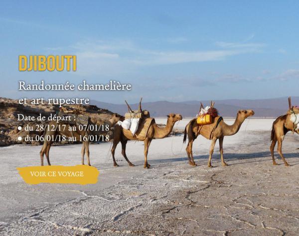 Djibouti, randonnée chamelière et art rupestre