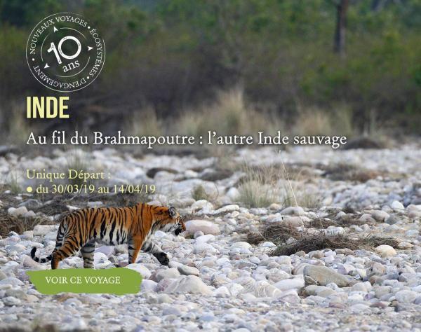 Inde, Au fil du Brahmapoutre