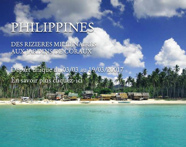 Philippines - Des rizières millénaires aux jardins de coraux