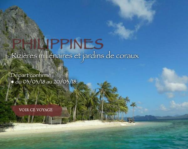 Philippines, rizières millénaires et jardins de coraux