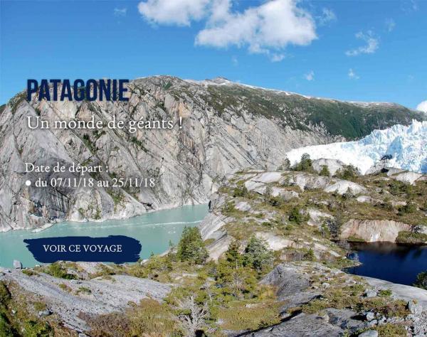 Patagonie un monde de géant