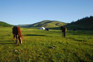 Mongolie Voyage découverte hors sentiers battus sur mesurev trek yacks chevaux