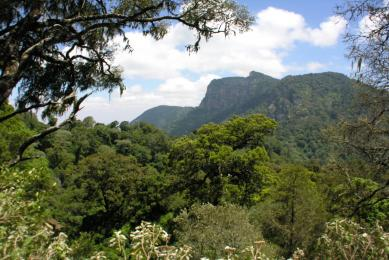 randonnée et safari au kenya