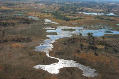 Namibie – Botswana- Zimbabwe : delta de l'Okavango