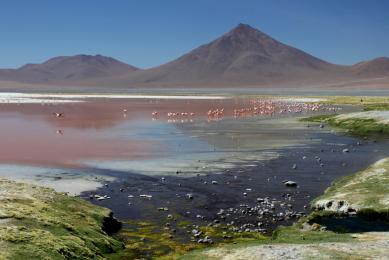 Trekking Pérou Bolivie lagunes salar voyage volcan