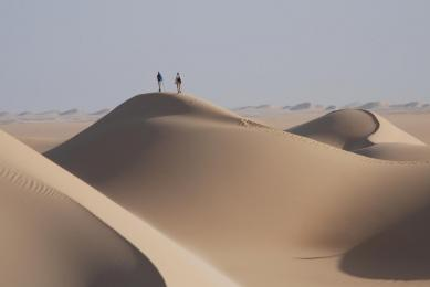 trek désert blanc - libyque - oasis siwa