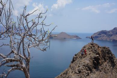 Voyage Indonésie Île de Savu